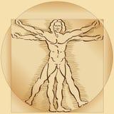 Modelo do homem de Vitruvian Imagens de Stock Royalty Free