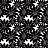 Modelo elegante inconsútil con las flores negras en el fondo blanco Foto de archivo