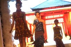 Modelo en el desfile de moda que lleva la colección china del batik Fotografía de archivo