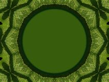 Modelo en las hojas verdes Imágenes de archivo libres de regalías