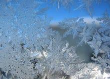 Modelo escarchado en ventana del invierno Fotos de archivo