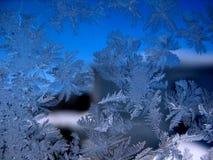 Modelo escarchado en ventana del invierno Foto de archivo libre de regalías