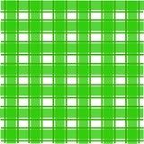 Modelo escocés verde imagen de archivo libre de regalías