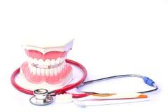 modelo, estetoscópio e escova de dentes dos cuidados dentários no backgrou branco Imagens de Stock Royalty Free