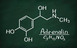 Modelo estrutural da adrenalina Imagem de Stock Royalty Free