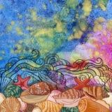 Modelo exótico del mar Imagen de archivo libre de regalías