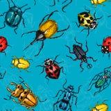 Modelo exhausto de la mano inconsútil de los escarabajos libre illustration