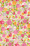 Modelo floral Fotografía de archivo libre de regalías