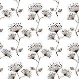 Modelo floral del vector inconsútil Dé el fondo blanco y negro exhausto con flovers y hojas Foto de archivo
