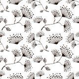 Modelo floral del vector inconsútil Dé el fondo blanco y negro exhausto con flovers y hojas Fotos de archivo