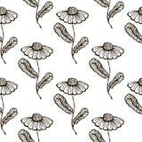 Modelo floral del vector inconsútil Dé el fondo blanco y negro exhausto con flovers y hojas Fotografía de archivo libre de regalías