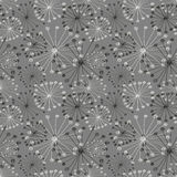 Modelo floral del vector inconsútil Fondo dibujado mano gris con las flores abstractas Imagen de archivo libre de regalías