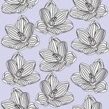 Modelo floral inconsútil Imágenes de archivo libres de regalías