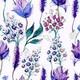Modelo floral inconsútil Imagen de archivo libre de regalías