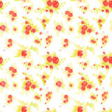Modelo floral inconsútil Foto de archivo