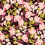 Modelo floral inconsútil con las flores rosadas Imágenes de archivo libres de regalías