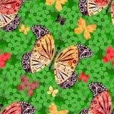 Modelo floral inconsútil con las mariposas Foto de archivo