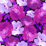 Modelo floral inconsútil con las rosas Imágenes de archivo libres de regalías