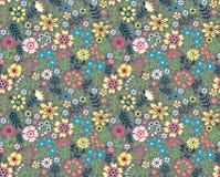 Modelo floral lindo Imagenes de archivo