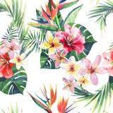 Modelo floral maravilloso tropical herbario verde claro del verano de Hawaii del hojas de palma tropicales y flor azul violeta ro Imagen de archivo libre de regalías
