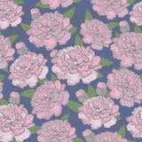 Modelo floreciente inconsútil hermoso de la peonía en el fondo azul, ejemplo Fotos de archivo libres de regalías