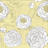 Modelo flowers Foto de archivo