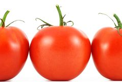 Modelo fresco de los tomates Fotos de archivo