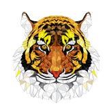 Modelo geométrico del tigre bajo del polígono - Vector el ejemplo Foto de archivo libre de regalías