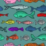 Modelo gráfico inconsútil con los pescados dibujados mano Imagen de archivo libre de regalías