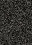 Modelo granoso blanco y negro fotos de archivo libres de regalías
