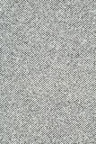 Modelo gris Fotografía de archivo