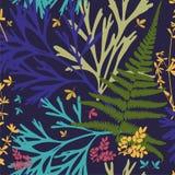 modelo Herbario con las flores salvajes, ramas, hojas Fondo botánico en azul libre illustration