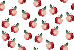 Modelo hermoso con los elementos dibujados mano - waterco lindo de las manzanas Imagen de archivo libre de regalías