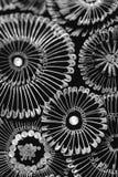 Modelo hermoso del metal Imagen de archivo