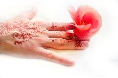 Modelo hindú en hibisco tropical de la mano femenina y de la flor roja Fotos de archivo