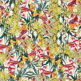 Modelo ilustrado tropical Pintura al óleo en lona fotos de archivo libres de regalías