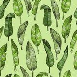 Modelo inconsútil abstracto de las hojas con las hojas tropicales ilustración del vector
