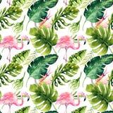 Modelo inconsútil aislado tropical con el flamenco Dibujo tropical de la acuarela, pájaro color de rosa y palmera del verdor, tró