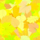 Modelo inconsútil Autumn Leaves Imagen de archivo libre de regalías