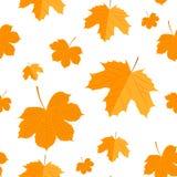 Modelo inconsútil Autumn Yellow Leaves Imagen de archivo