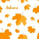 Modelo inconsútil Autumn Yellow Leaves Imagen de archivo libre de regalías