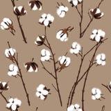 Modelo inconsútil beige de las plantas de algodón Foto de archivo libre de regalías