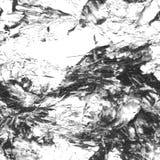 Modelo inconsútil blanco negro Fotos de archivo