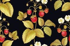 Modelo inconsútil botánico con la fresa Fotografía de archivo