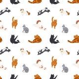 Modelo inconsútil colorido con los gatos de diversas razas que duermen, caminando, el lavarse, estirándose en blanco stock de ilustración