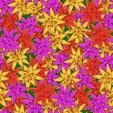 Modelo inconsútil colorido de la flor de Guzmania Foto de archivo libre de regalías