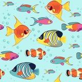 Modelo inconsútil colorido tropical del angelote y de los clownfish libre illustration