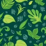 Modelo inconsútil con adorno floral con colores verdes muy hermosos Modelo inconsútil con adornos tropicales de las hojas foto de archivo