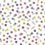 Modelo inconsútil con diversas flores de la primavera Elementos aislados en un fondo blanco fotografía de archivo libre de regalías