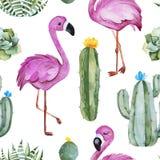 Modelo inconsútil con el cactus verde de la acuarela, los succulents, las flores multicoloras y los flamencos lindos fotografía de archivo libre de regalías